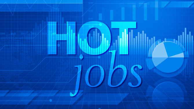 hot jobs  project manager